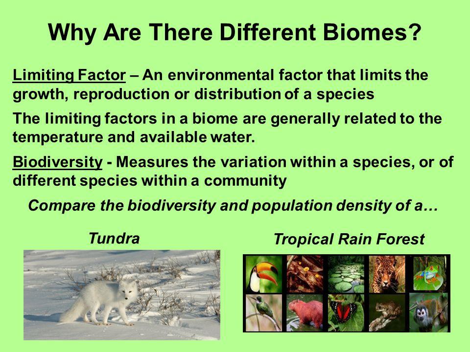 Where Are Biomes Found.