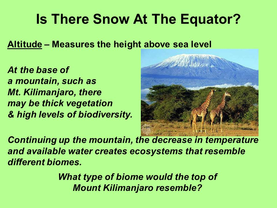 Altitude & Latitude Where is the equator located in this graph.