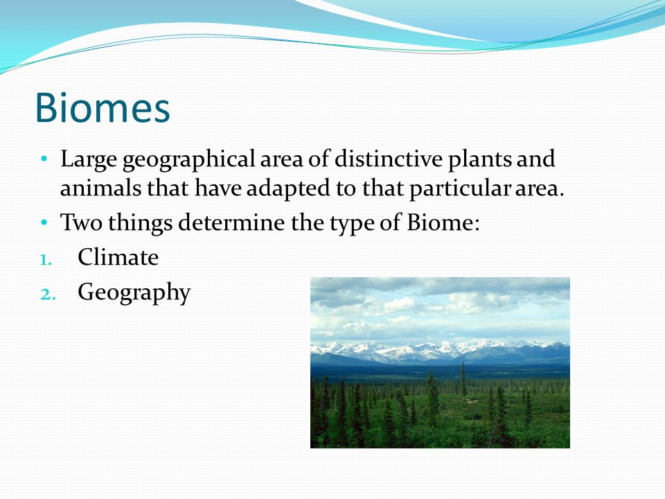 Biomes Large geographical area of distinctive plants and animals that have adapted to that particular area.