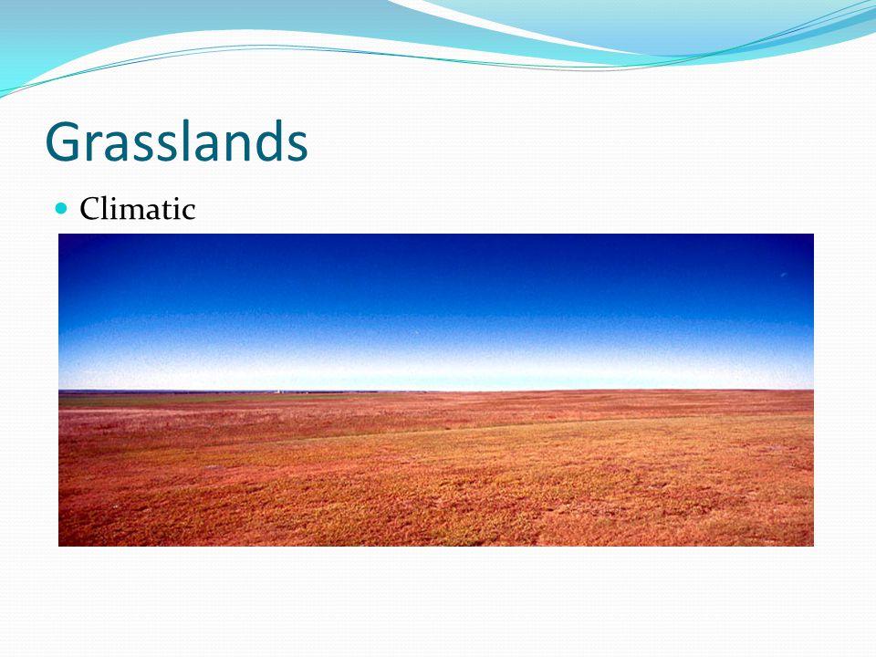 Grasslands Climatic