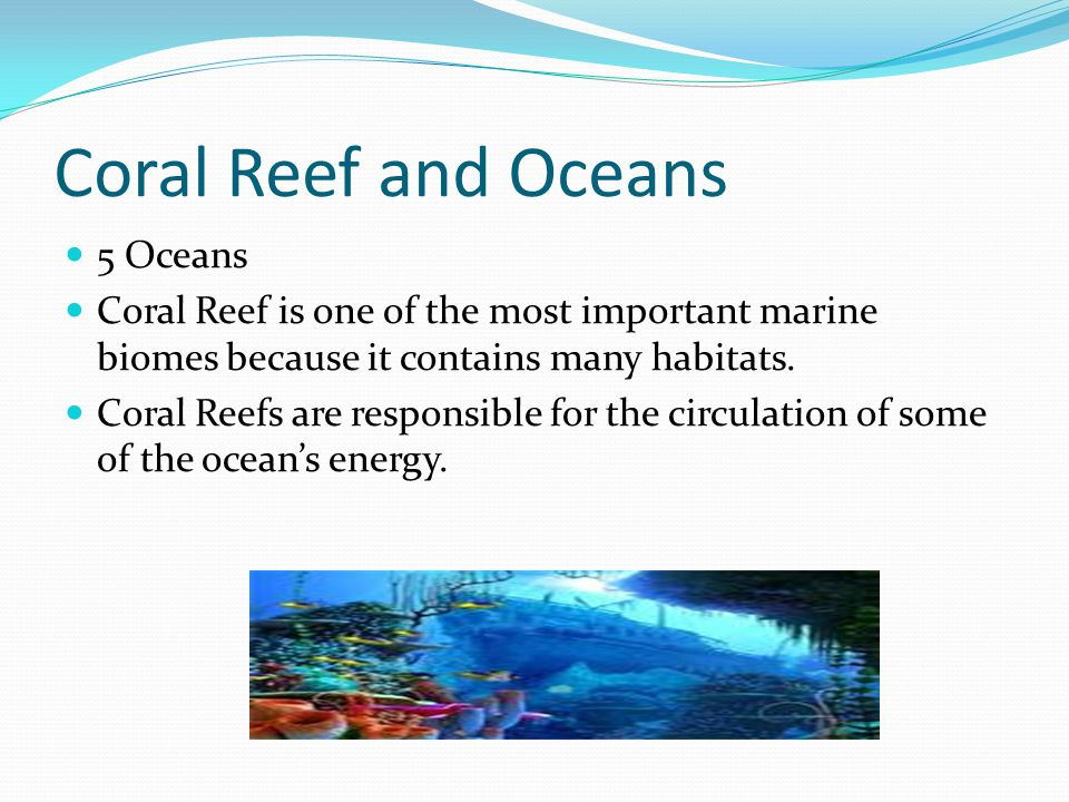 Coral Reef and Oceans 5 Oceans Coral Reef is one of the most important marine biomes because it contains many habitats.