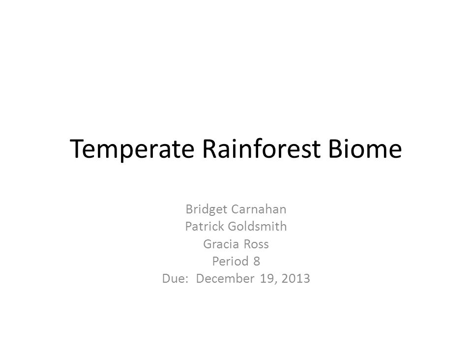 Temperate Rainforest Biome Bridget Carnahan Patrick Goldsmith Gracia Ross Period 8 Due: December 19, 2013