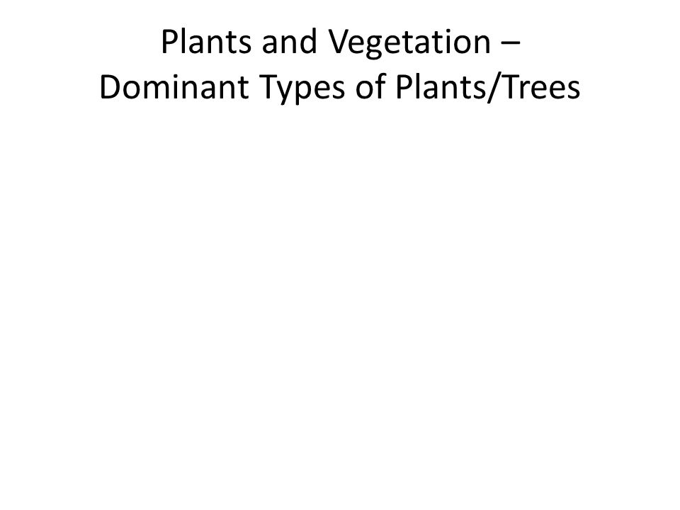 Plants and Vegetation – Dominant Types of Plants/Trees