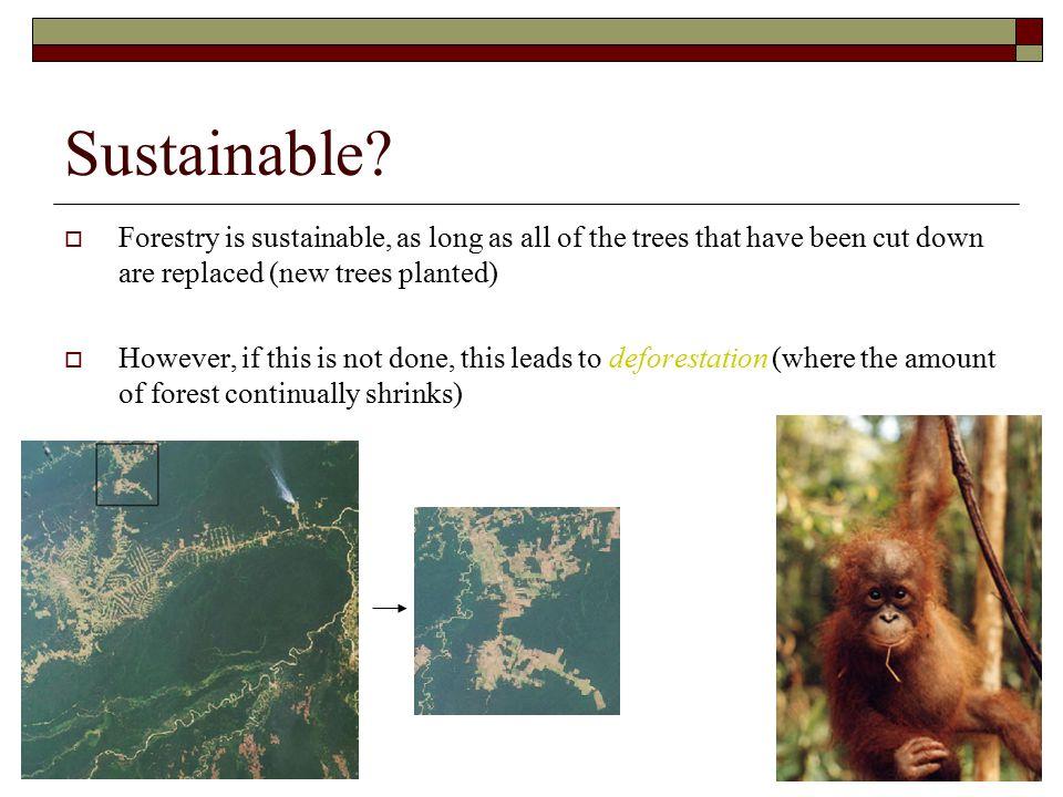 Sustainable.