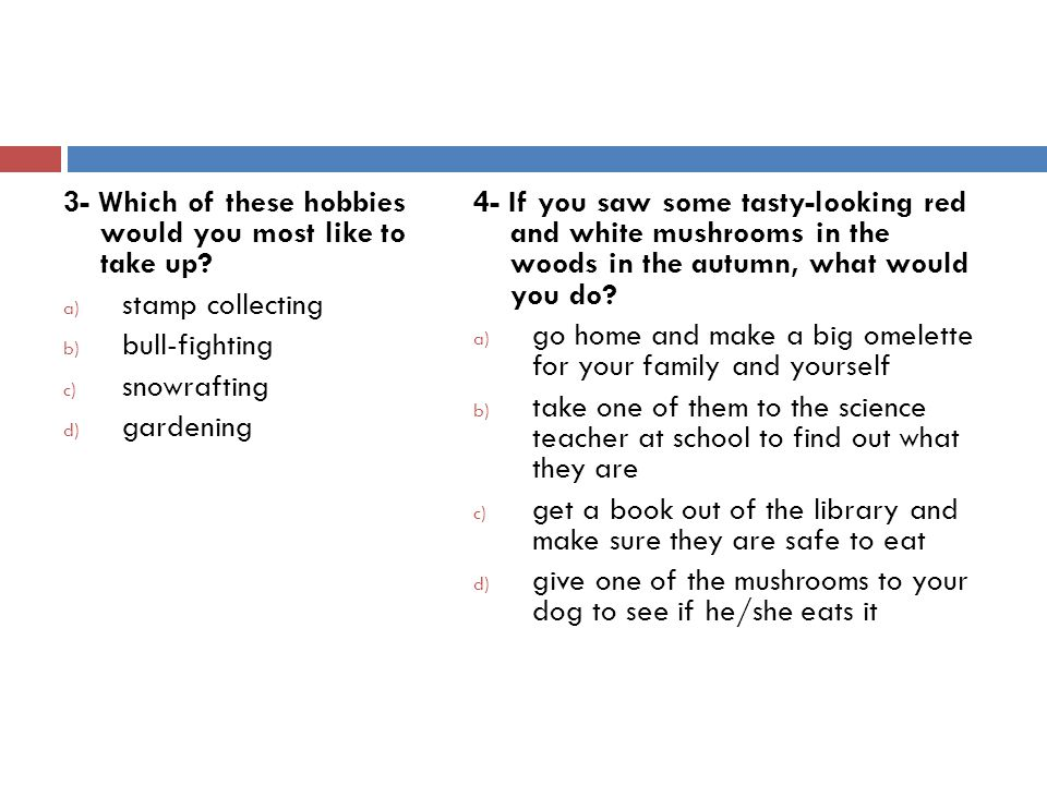 3- Which of these hobbies would you most like to take up.