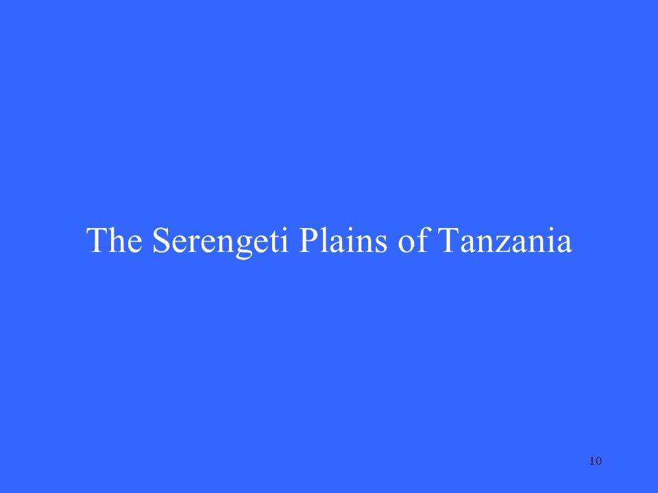 10 The Serengeti Plains of Tanzania