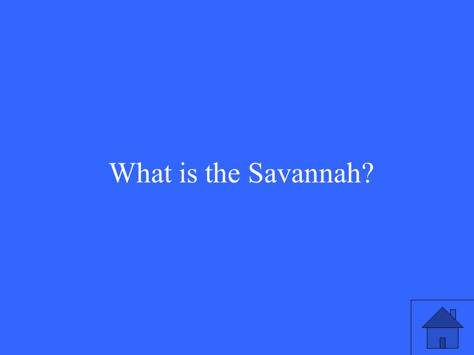 11 What is the Savannah?