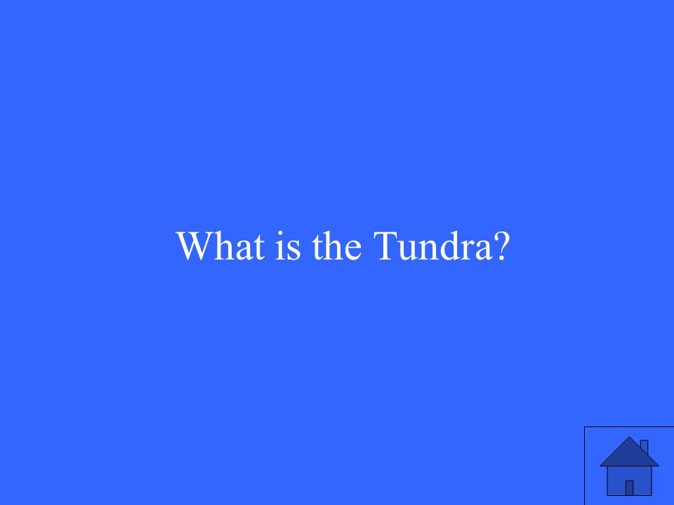 13 What is the Tundra?