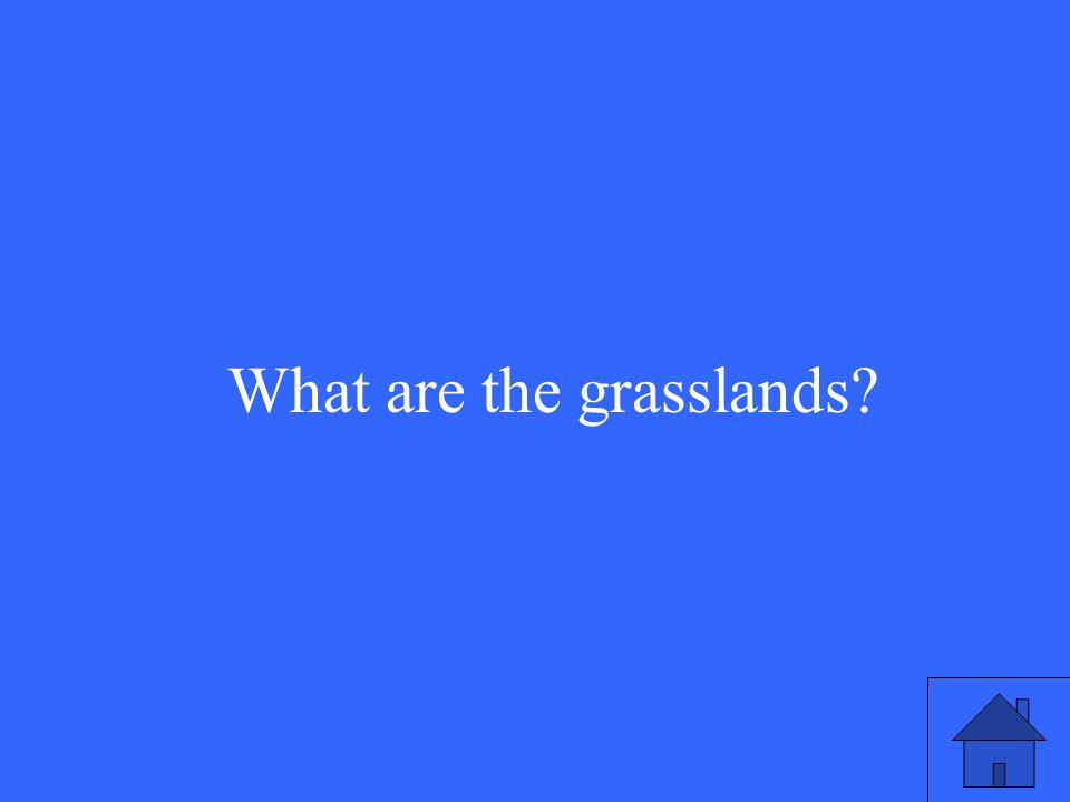 15 What are the grasslands?