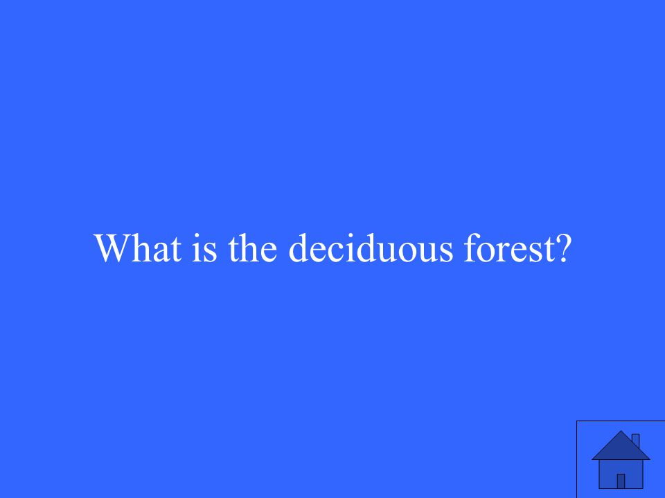 19 What is the deciduous forest