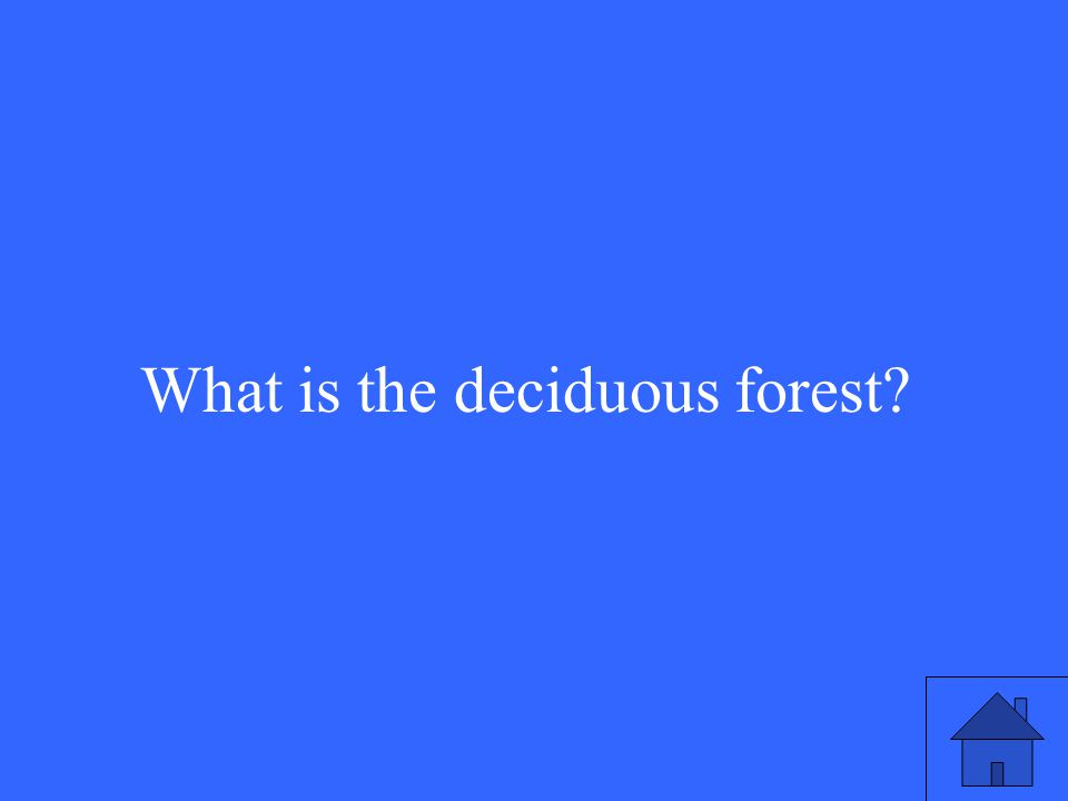 21 What is the deciduous forest