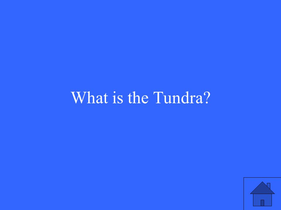 27 What is the Tundra?