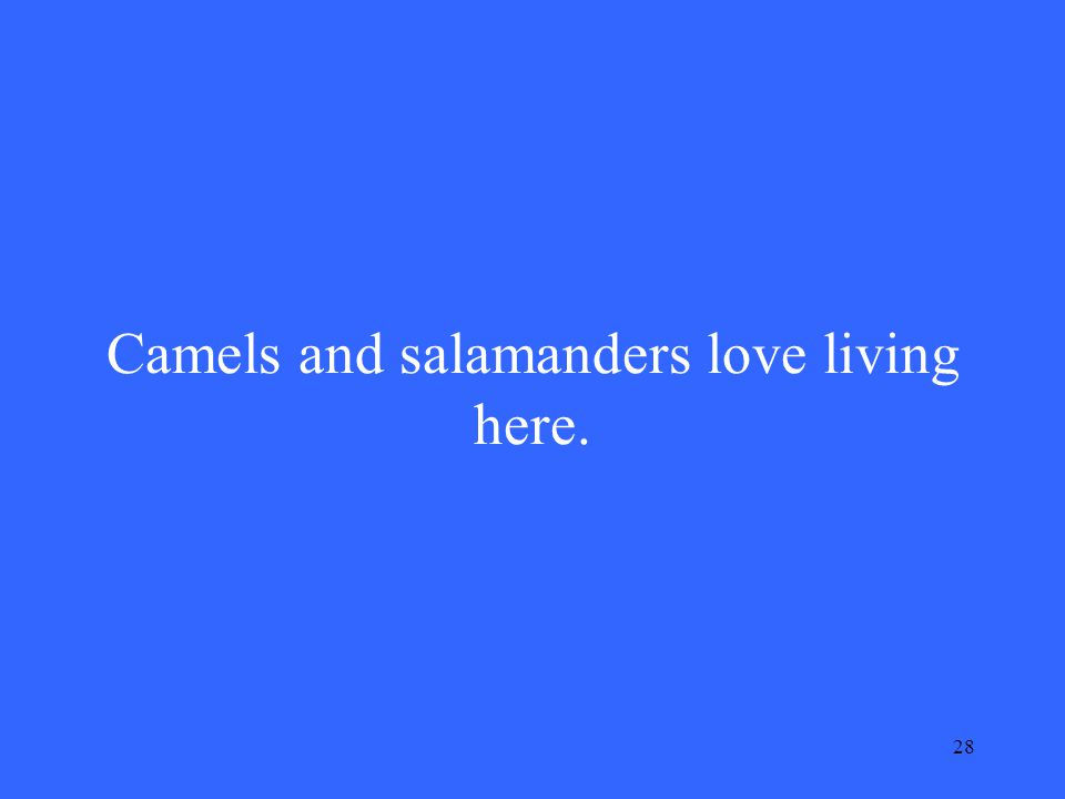 28 Camels and salamanders love living here.
