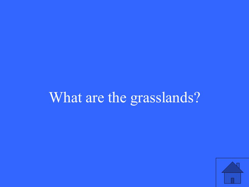 37 What are the grasslands?