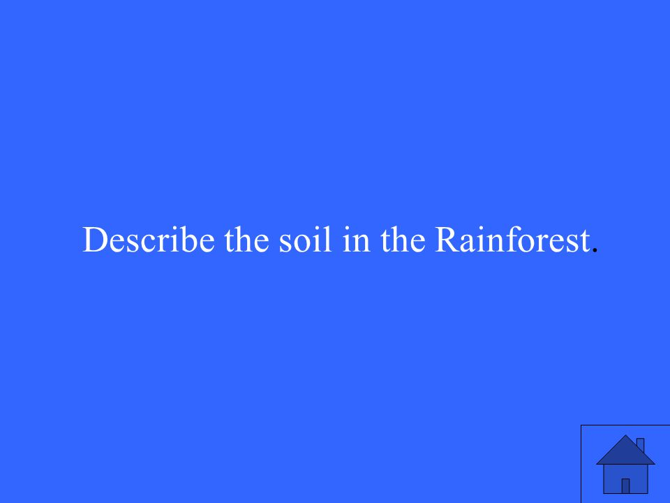 38 Describe the soil in the Rainforest.