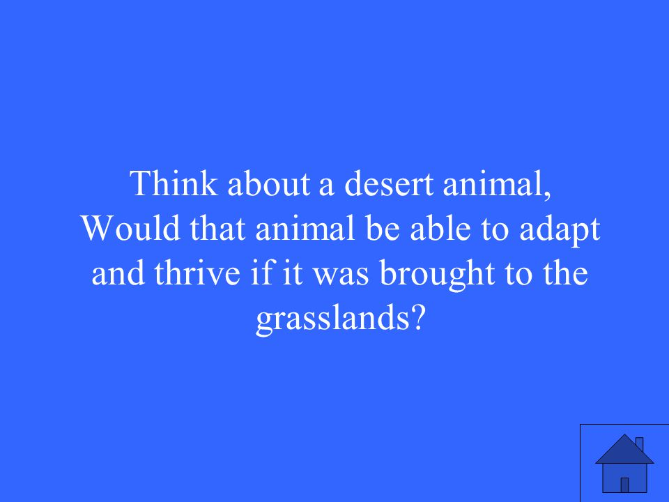 42 Think about a desert animal, Would that animal be able to adapt and thrive if it was brought to the grasslands