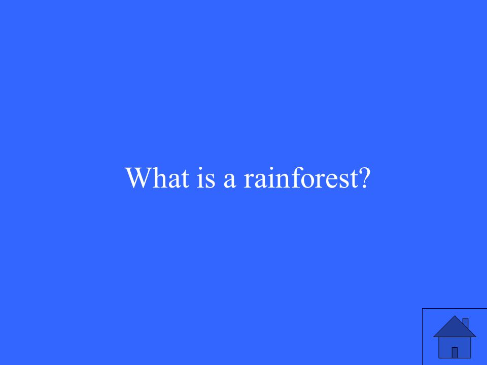 5 What is a rainforest