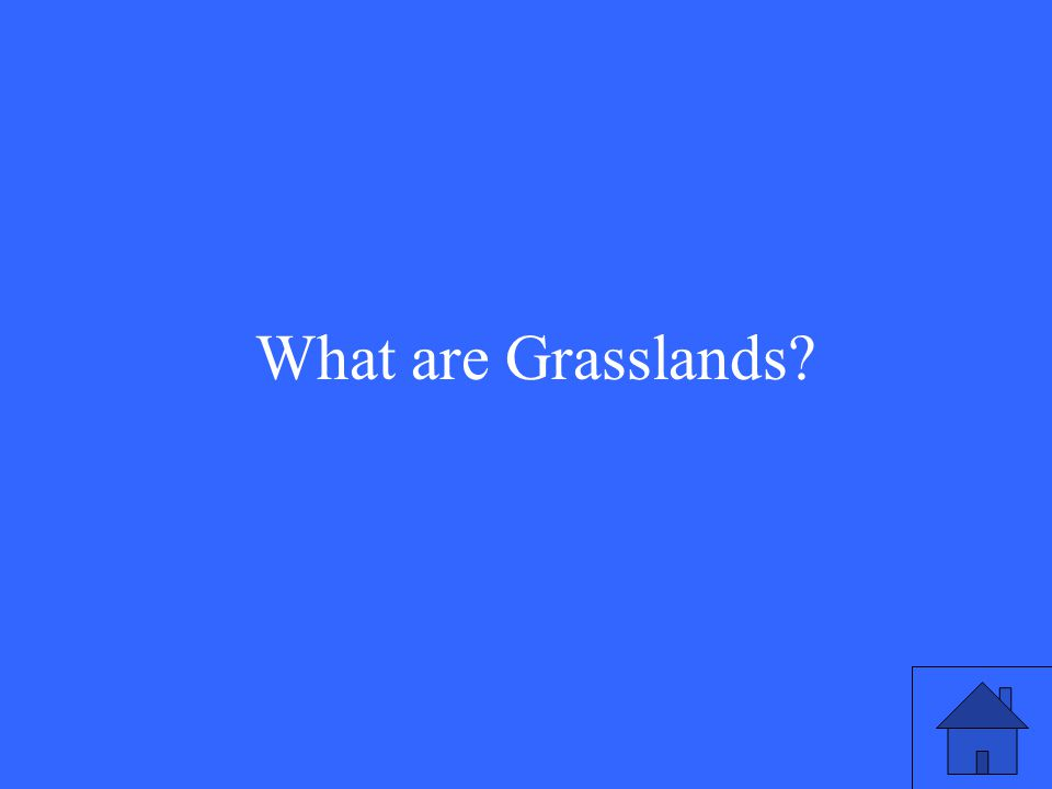 7 What are Grasslands