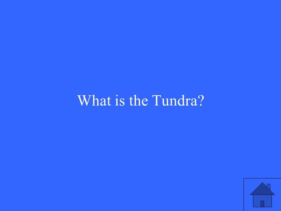 9 What is the Tundra?