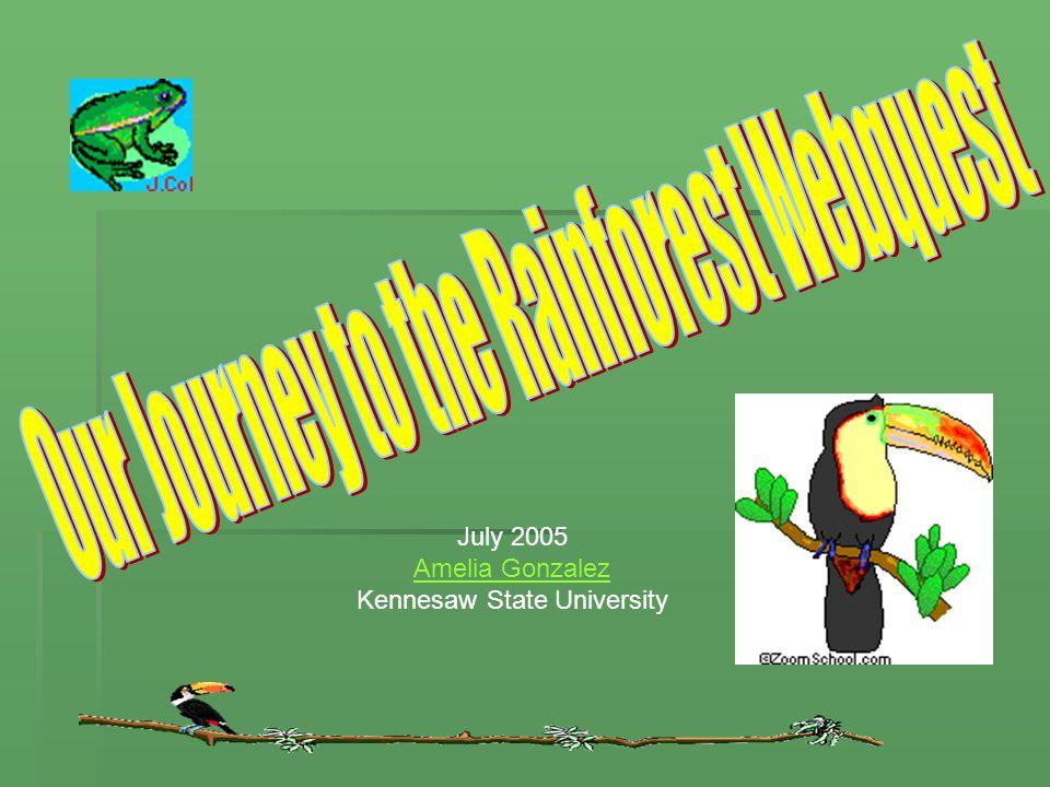 July 2005 Amelia Gonzalez Kennesaw State University