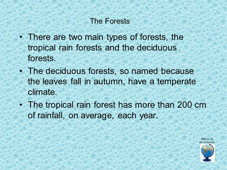 There are two main types of forests, the tropical rain forests and the deciduous forests.