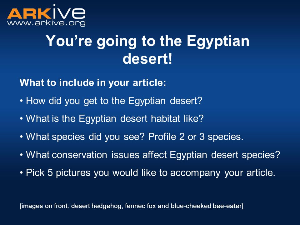 You're going to the Egyptian desert.