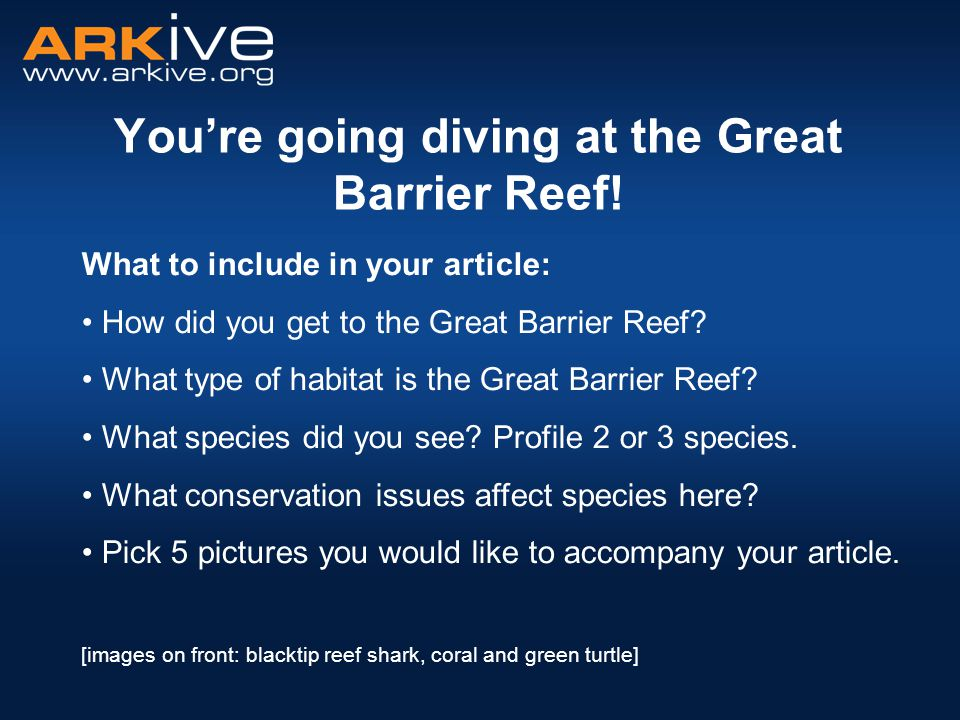 You're going diving at the Great Barrier Reef.