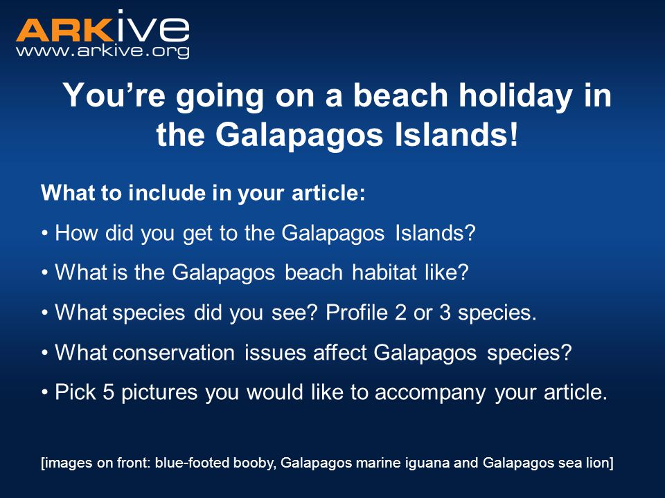 You're going on a beach holiday in the Galapagos Islands.