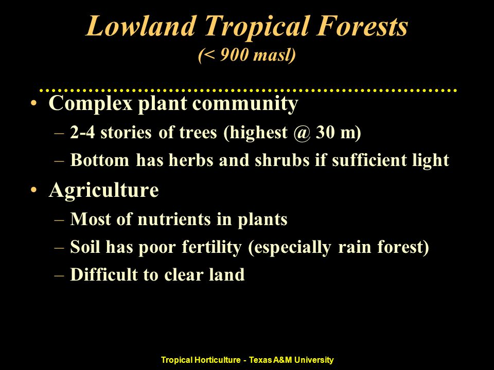 Tropical Horticulture - Texas A&M University Lowland Tropical Forests (< 900 masl) Complex plant community –2-4 stories of trees (highest @ 30 m) –Bottom has herbs and shrubs if sufficient light Agriculture –Most of nutrients in plants –Soil has poor fertility (especially rain forest) –Difficult to clear land
