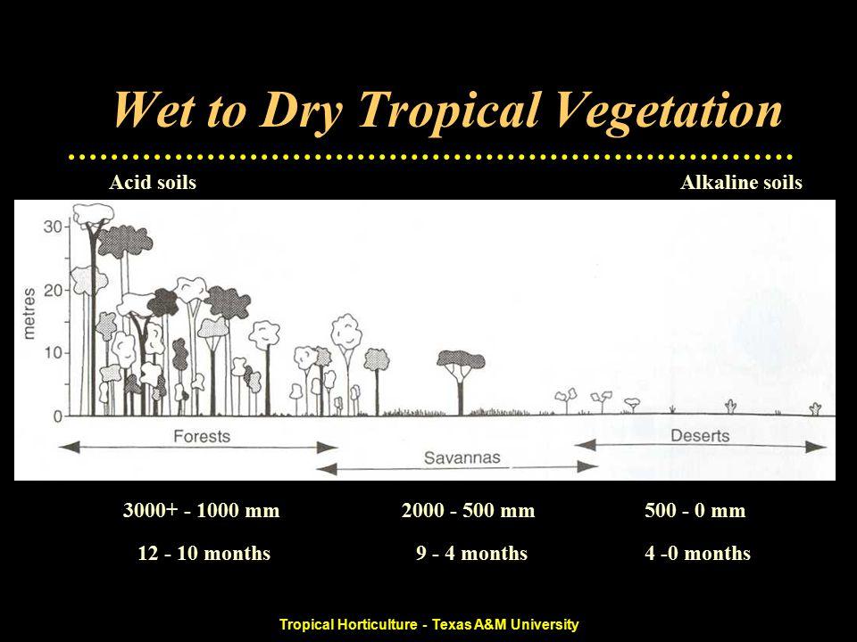 Tropical Horticulture - Texas A&M University Wet to Dry Tropical Vegetation 500 - 0 mm2000 - 500 mm3000+ - 1000 mm 4 -0 months9 - 4 months12 - 10 months Alkaline soilsAcid soils Rainforest Seasonal ForestWet Savanna Dry SavannaShrubland SteppesSemi-desertsDeserts