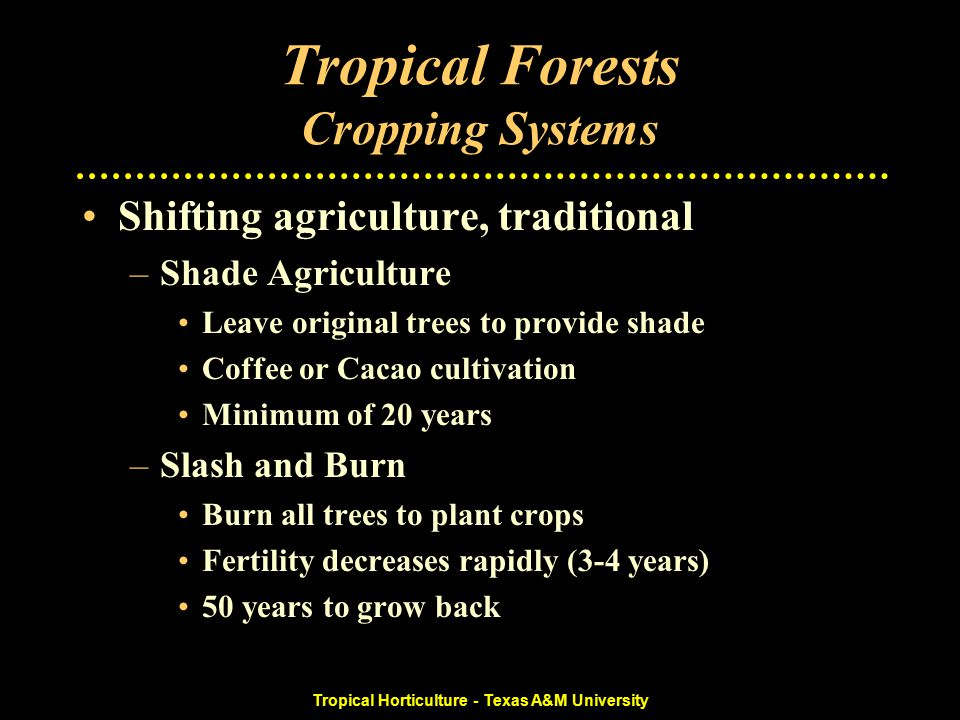 Tropical Horticulture - Texas A&M University Tropical Forests Cropping Systems Shifting agriculture, traditional –Shade Agriculture Leave original trees to provide shade Coffee or Cacao cultivation Minimum of 20 years –Slash and Burn Burn all trees to plant crops Fertility decreases rapidly (3-4 years) 50 years to grow back