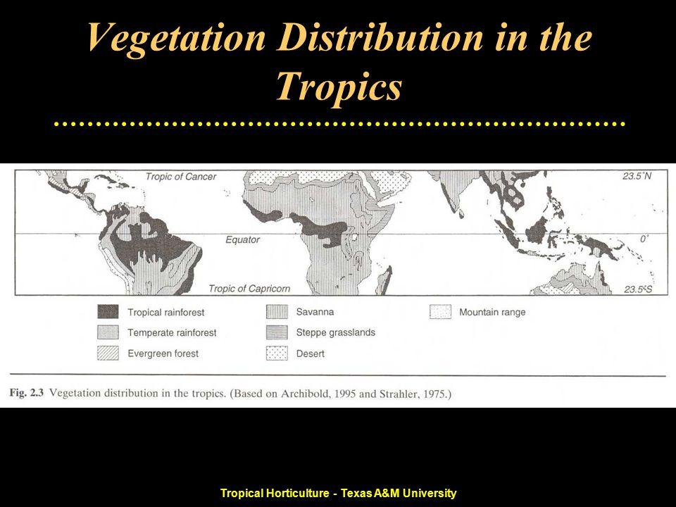 Tropical Horticulture - Texas A&M University Vegetation Distribution in the Tropics