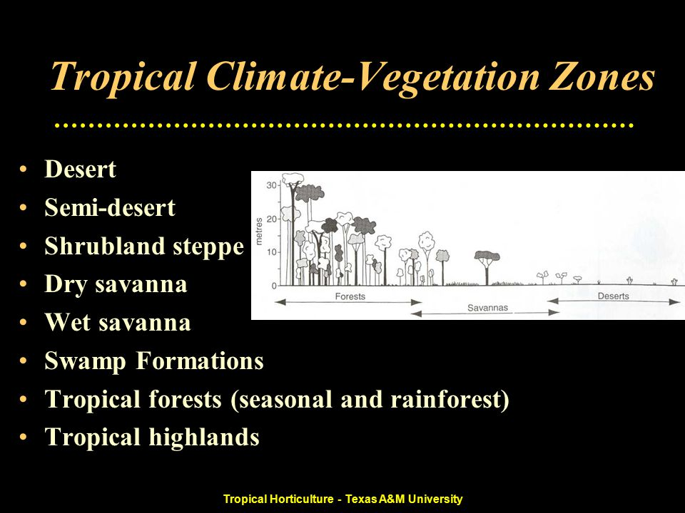 Tropical Horticulture - Texas A&M University Tropical Climate-Vegetation Zones Desert Semi-desert Shrubland steppe Dry savanna Wet savanna Swamp Formations Tropical forests (seasonal and rainforest) Tropical highlands