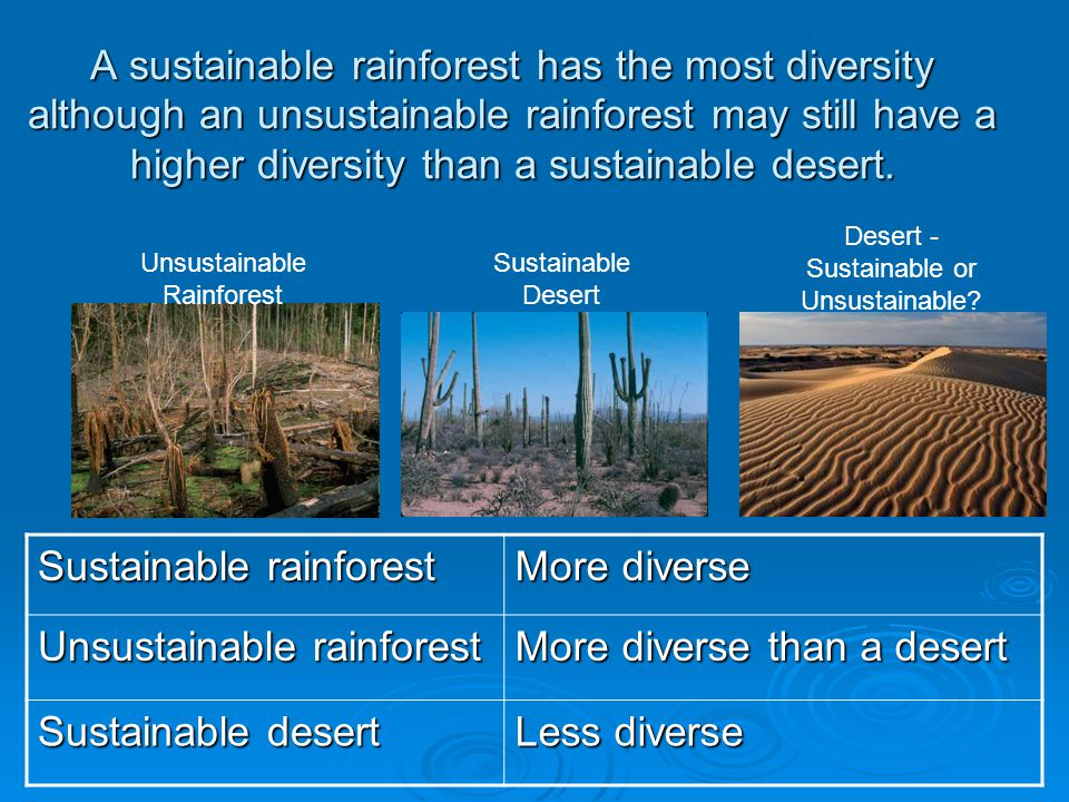 A sustainable rainforest has the most diversity although an unsustainable rainforest may still have a higher diversity than a sustainable desert. Sust