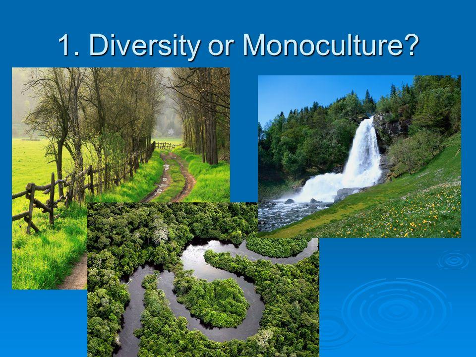 1. Diversity or Monoculture