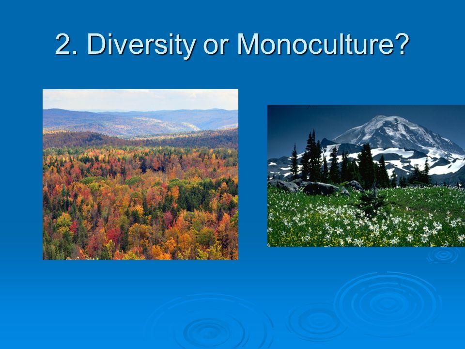 2. Diversity or Monoculture