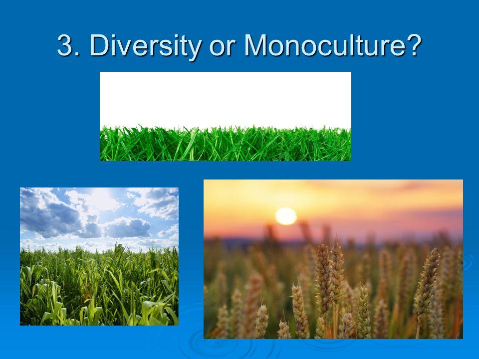 3. Diversity or Monoculture