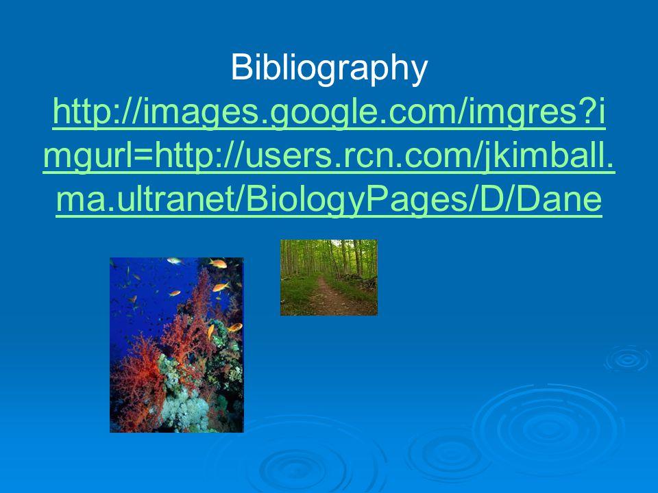 Bibliography http://images.google.com/imgres i mgurl=http://users.rcn.com/jkimball.