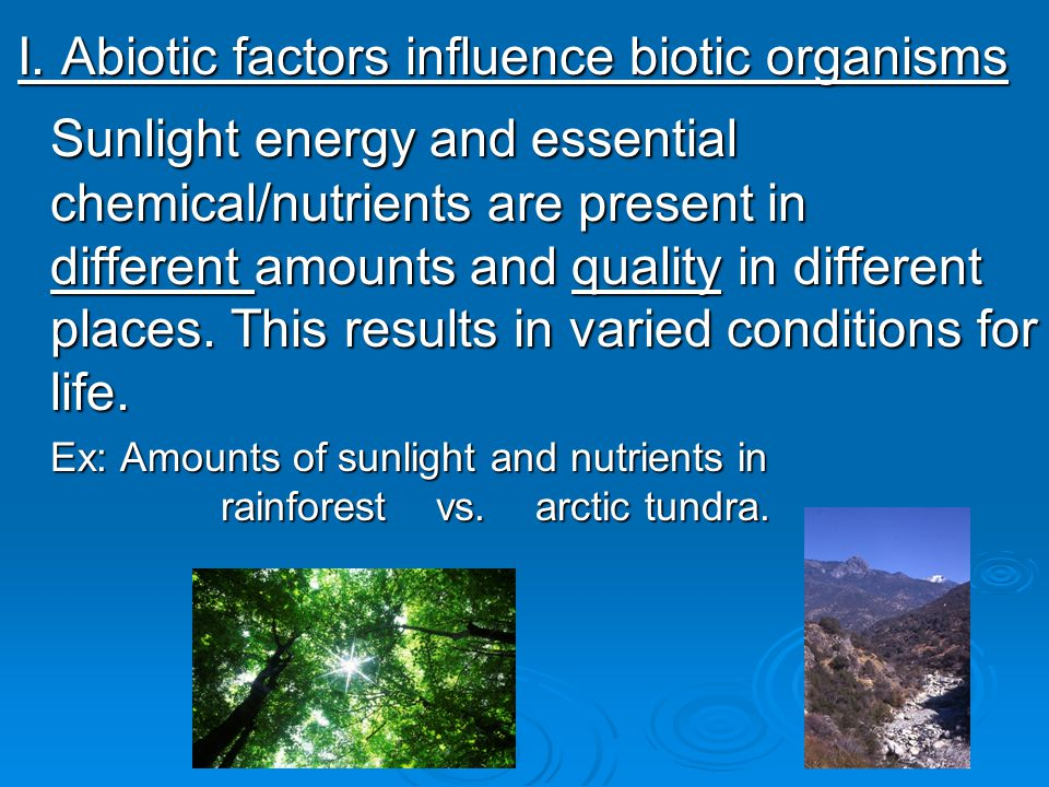 I. Abiotic factors influence biotic organisms Sunlight energy and essential chemical/nutrients are present in different amounts and quality in differe