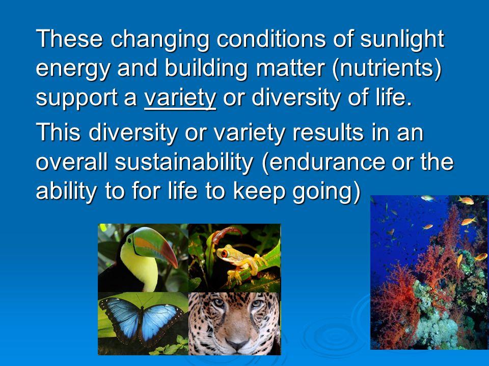 1. Diversity or Monoculture?