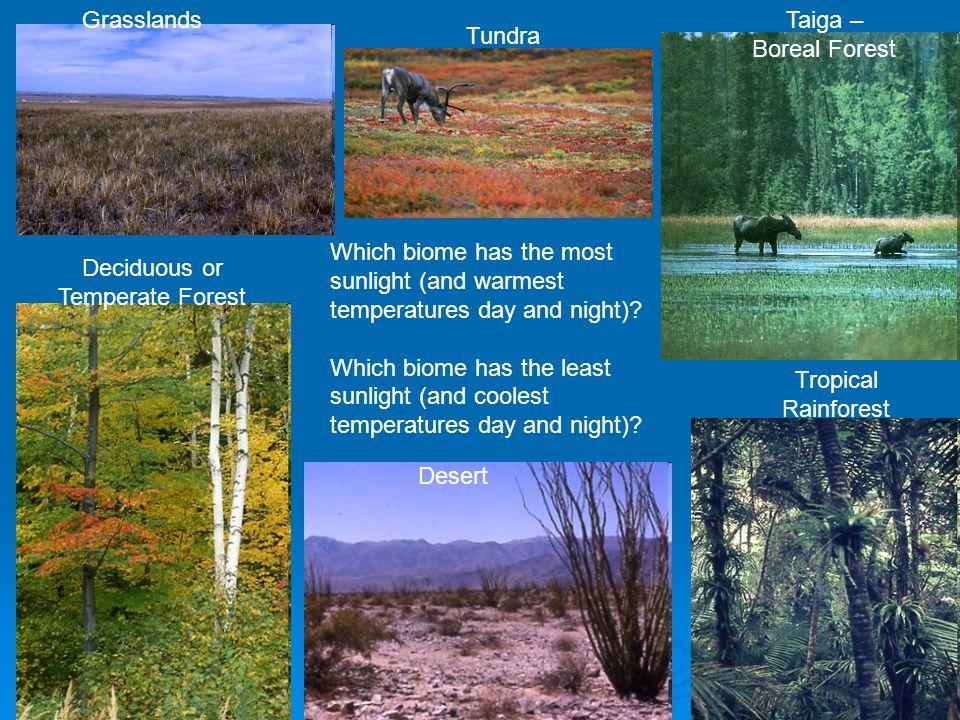 How temperature & precipitation affect plant and animal life 1.