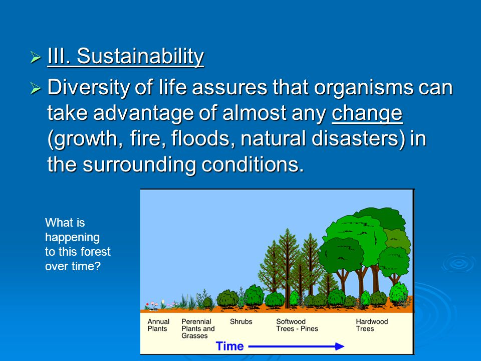  III. Sustainability  Diversity of life assures that organisms can take advantage of almost any change (growth, fire, floods, natural disasters) in