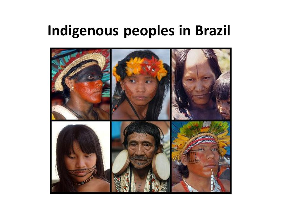 Indigenous peoples in Brazil