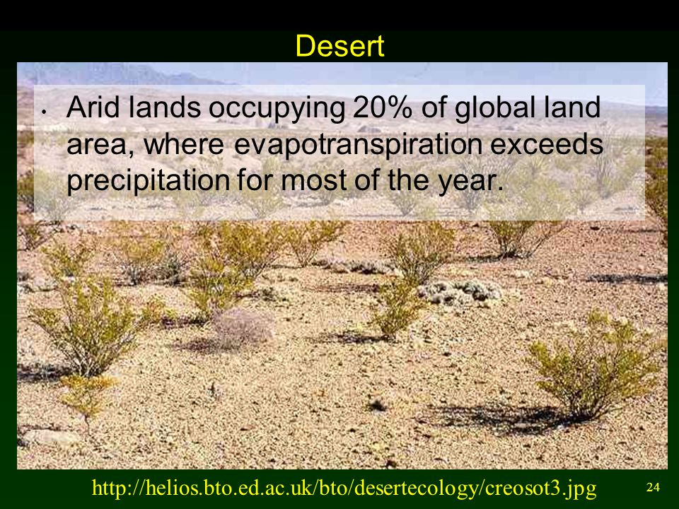 24 Desert Arid lands occupying 20% of global land area, where evapotranspiration exceeds precipitation for most of the year. http://helios.bto.ed.ac.u