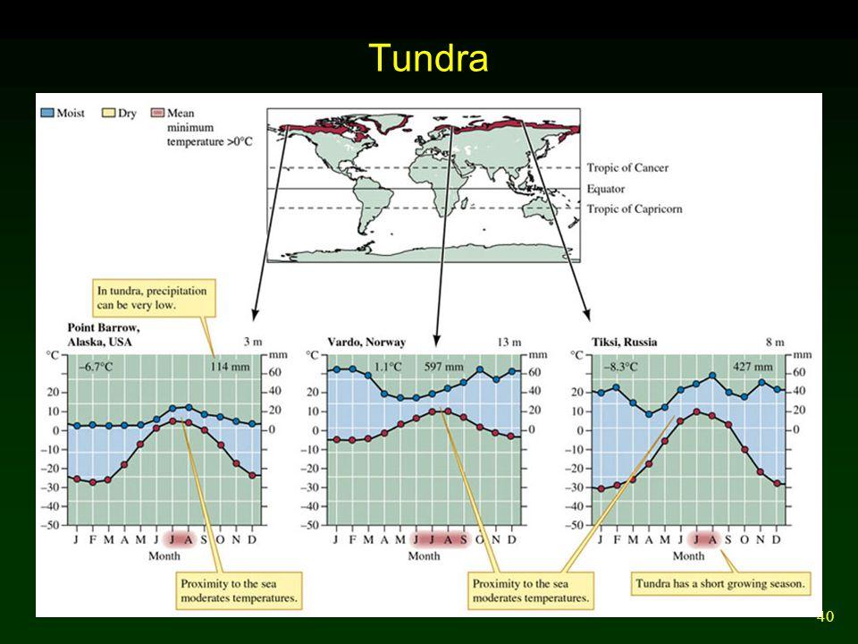 40 Tundra
