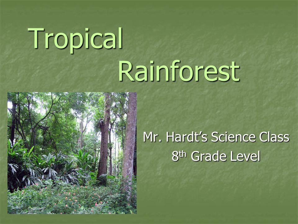 Tropical Rainforest Mr. Hardt's Science Class 8 th Grade Level