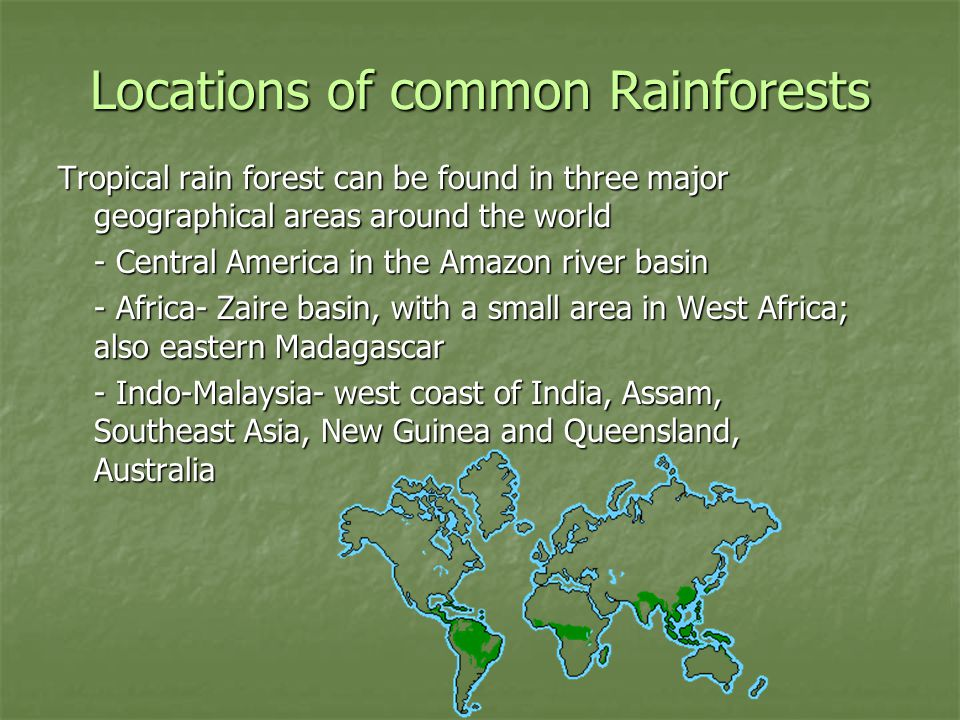 Locations of common Rainforests Tropical rain forest can be found in three major geographical areas around the world - Central America in the Amazon river basin - Africa- Zaire basin, with a small area in West Africa; also eastern Madagascar - Indo-Malaysia- west coast of India, Assam, Southeast Asia, New Guinea and Queensland, Australia