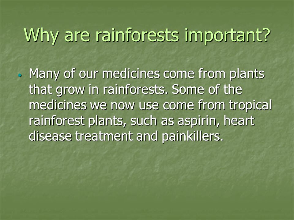 Why are rainforests important. Many of our medicines come from plants that grow in rainforests.