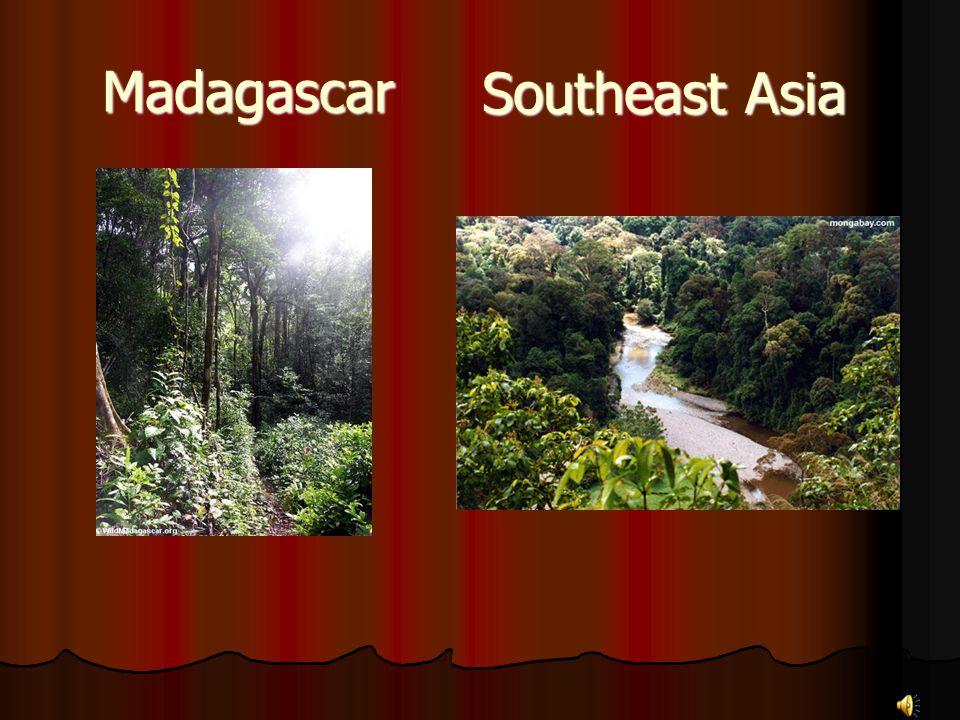 Madagascar Southeast Asia
