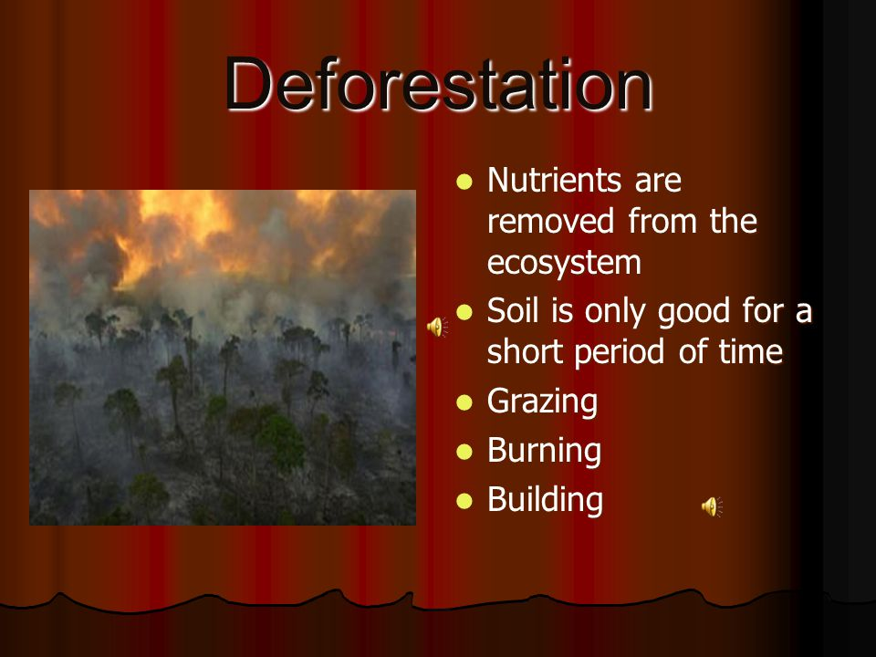 Deforestation Nutrients are removed from the ecosystem Nutrients are removed from the ecosystem Soil is only good for a short period of time Soil is only good for a short period of time Grazing Grazing Burning Burning Building Building
